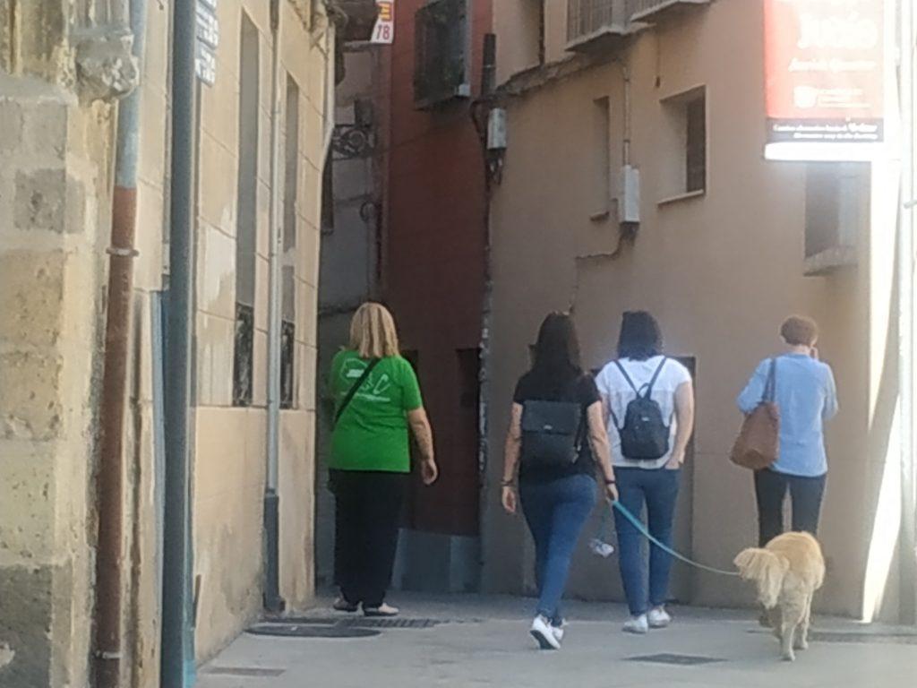 visitas guiadas en segovia pet friendly, segovia imperdible